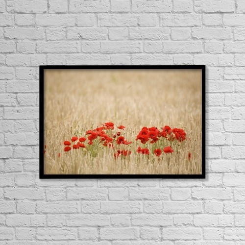 "Printscapes Wall Art: 18"" x 12"" Canvas Print With Black Frame - Poppies Growing Wild by John Short"