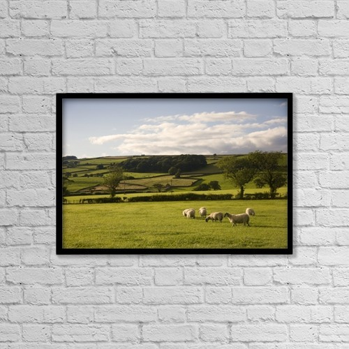 "Printscapes Wall Art: 18"" x 12"" Canvas Print With Black Frame - Sheep In A Field, Yorkshire, England by John Short"