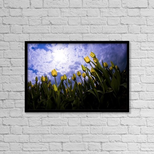 "Printscapes Wall Art: 18"" x 12"" Canvas Print With Black Frame - Tulips And Sky by Richard Wear"