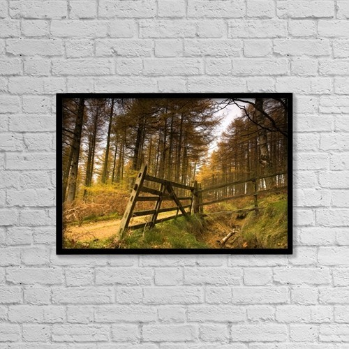 "Printscapes Wall Art: 18"" x 12"" Canvas Print With Black Frame - Forest, Yorkshire, England by John Short"