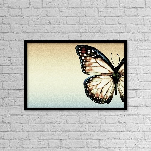 "Printscapes Wall Art: 18"" x 12"" Canvas Print With Black Frame - Artistic Butterfly by Chris and Kate Knorr"