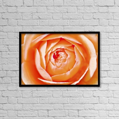 "Printscapes Wall Art: 18"" x 12"" Canvas Print With Black Frame - Orange Rose by Chris and Kate Knorr"
