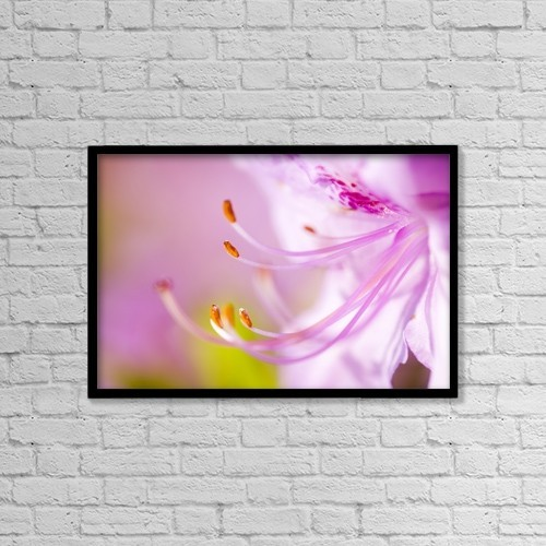 "Printscapes Wall Art: 18"" x 12"" Canvas Print With Black Frame - Close Up Of A Pink Flower by Craig Tuttle"