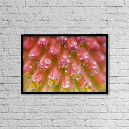 "Printscapes Wall Art: 18"" x 12"" Canvas Print With Black Frame - Closeup Of Flower Stamen by Craig Tuttle"