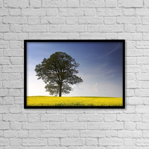 """Printscapes Wall Art: 18"""" x 12"""" Canvas Print With Black Frame - Tree In A Rapeseed Field, Yorkshire, England by John Short"""