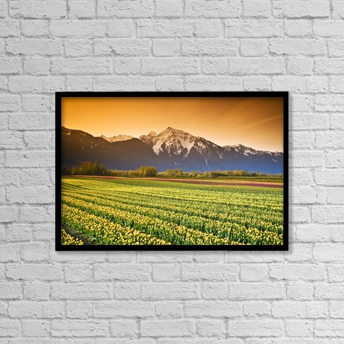 "Printscapes Wall Art: 18"" x 12"" Canvas Print With Black Frame - Tulip Cultivation, British Columbia, Canada by Richard Wear"