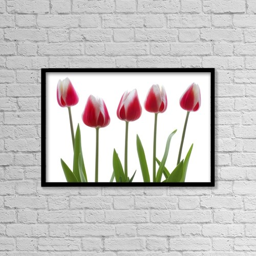 """Printscapes Wall Art: 18"""" x 12"""" Canvas Print With Black Frame - Flowers by Chris and Kate Knorr"""