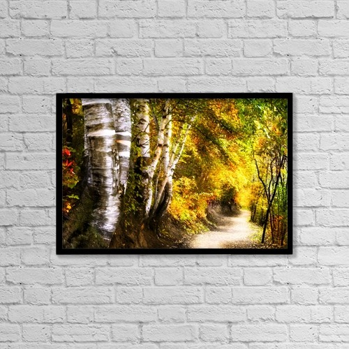 "Printscapes Wall Art: 18"" x 12"" Canvas Print With Black Frame - Birch Trees And Path by Chris and Kate Knorr"