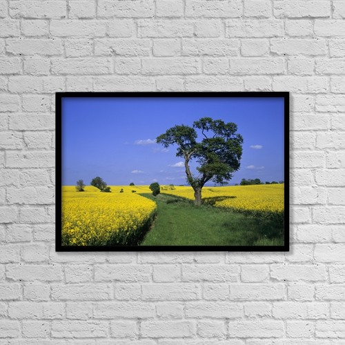 """Printscapes Wall Art: 18"""" x 12"""" Canvas Print With Black Frame - Agriculture by Lizzie Shepherd"""