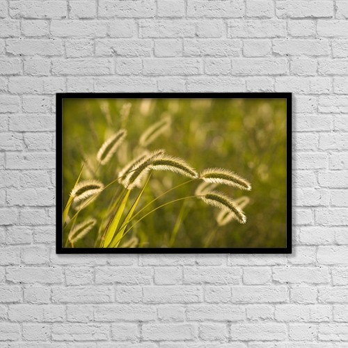 "Printscapes Wall Art: 18"" x 12"" Canvas Print With Black Frame - Wild Grass by David Chapman"