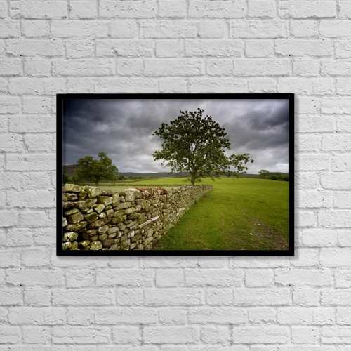 "Printscapes Wall Art: 18"" x 12"" Canvas Print With Black Frame - Tree Along A Stone Fence, Cumbria, England by John Short"