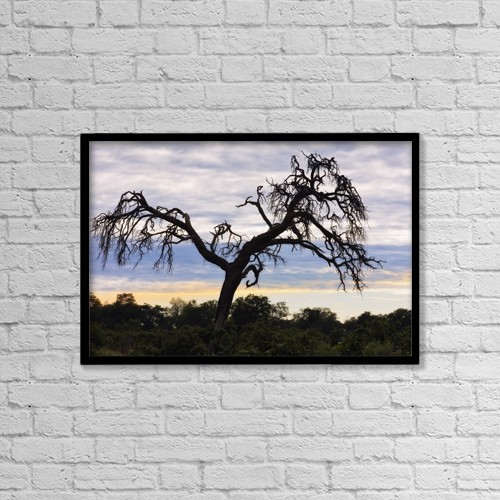 "Printscapes Wall Art: 18"" x 12"" Canvas Print With Black Frame - Camel Thorn Tree, Tanzania, Africa by Carson Ganci"