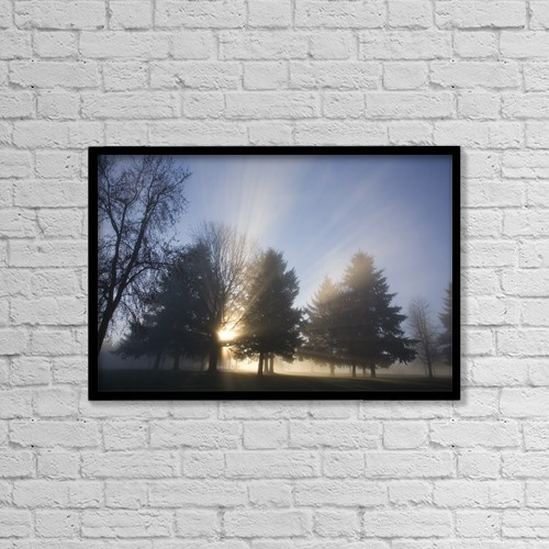 """Printscapes Wall Art: 18"""" x 12"""" Canvas Print With Black Frame - Sunray Through Trees And Fog by Craig Tuttle"""