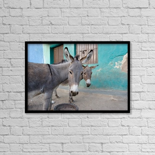 "Printscapes Wall Art: 18"" x 12"" Canvas Print With Black Frame - Donkeys, Harar, Ethiopia, Africa by David DuChemin"