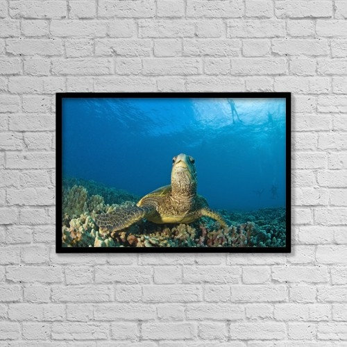 "Printscapes Wall Art: 18"" x 12"" Canvas Print With Black Frame - Maui Hawaii Usa by Stuart Westmorland"