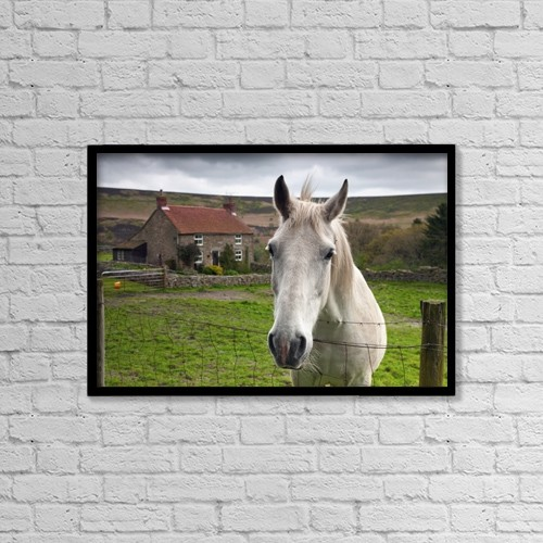 """Printscapes Wall Art: 18"""" x 12"""" Canvas Print With Black Frame - Animals by John Short"""