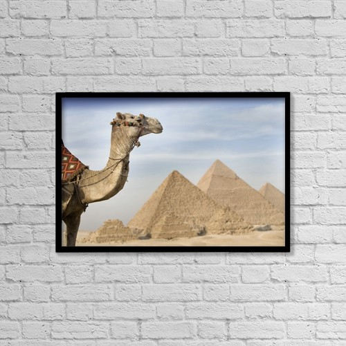 "Printscapes Wall Art: 18"" x 12"" Canvas Print With Black Frame - A Camel With The Pyramids In The Background by Deddeda"