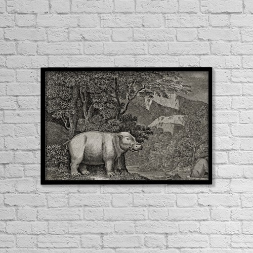 """Printscapes Wall Art: 18"""" x 12"""" Canvas Print With Black Frame - The Hippopotamus Of The Cape Of Good Hope by Ken Welsh"""