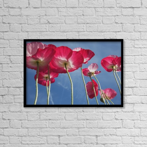 "Printscapes Wall Art: 18"" x 12"" Canvas Print With Black Frame - Pink Flowers by Craig Tuttle"