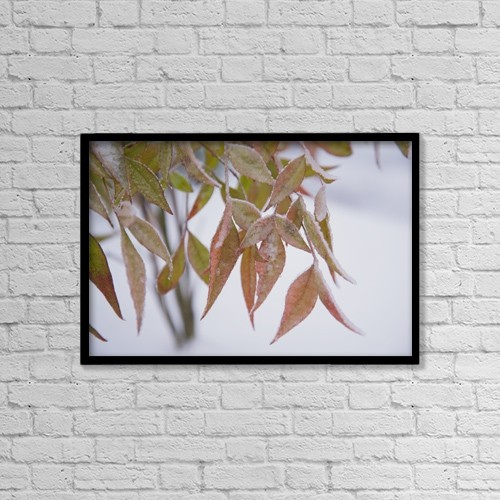 "Printscapes Wall Art: 18"" x 12"" Canvas Print With Black Frame - Leaves by Craig Tuttle"