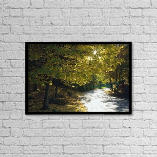 """Printscapes Wall Art: 18"""" x 12"""" Canvas Print With Black Frame - Road Among Autumn Trees by Craig Tuttle"""