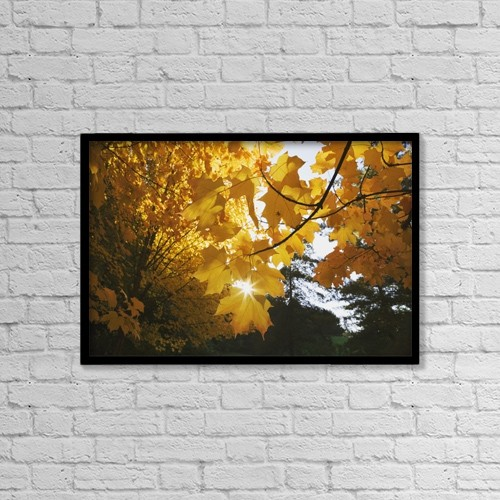 "Printscapes Wall Art: 18"" x 12"" Canvas Print With Black Frame - Fall Leaves by Craig Tuttle"