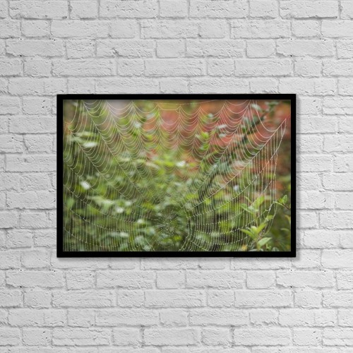 """Printscapes Wall Art: 18"""" x 12"""" Canvas Print With Black Frame - Detail Of Spider Web by Craig Tuttle"""