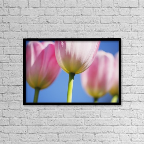 "Printscapes Wall Art: 18"" x 12"" Canvas Print With Black Frame - Tulips by Craig Tuttle"
