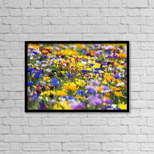 """Printscapes Wall Art: 18"""" x 12"""" Canvas Print With Black Frame - Wildflowers, Mount Hood, Oregon, Usa by Craig Tuttle"""
