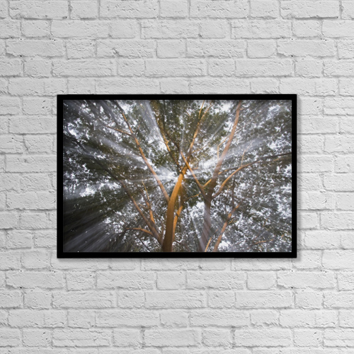 """Printscapes Wall Art: 18"""" x 12"""" Canvas Print With Black Frame - Nature by Michael Interisano"""