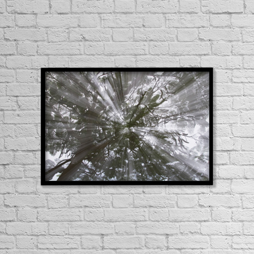 """Printscapes Wall Art: 18"""" x 12"""" Canvas Print With Black Frame - Rays Of Light Through A Tree by Michael Interisano"""