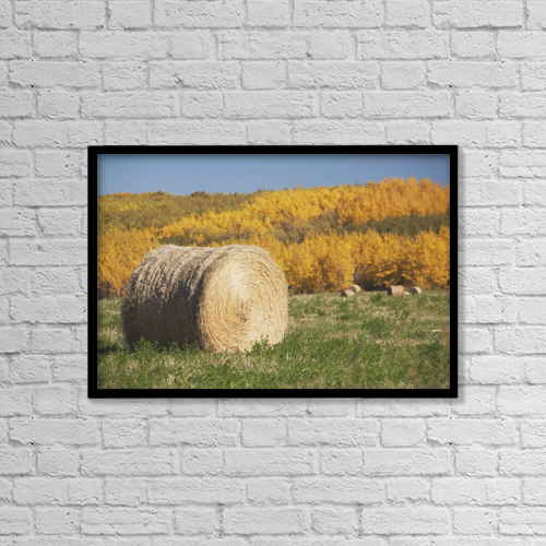 "Printscapes Wall Art: 18"" x 12"" Canvas Print With Black Frame - Agriculture by Michael Interisano"