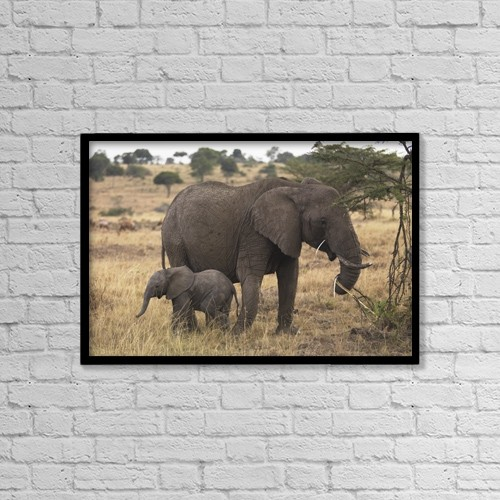"""Printscapes Wall Art: 18"""" x 12"""" Canvas Print With Black Frame - Mother And Baby Elephant by Keith Levit"""
