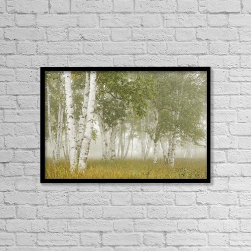 """Printscapes Wall Art: 18"""" x 12"""" Canvas Print With Black Frame - Birch Trees In The Fog by Susan Dykstra"""
