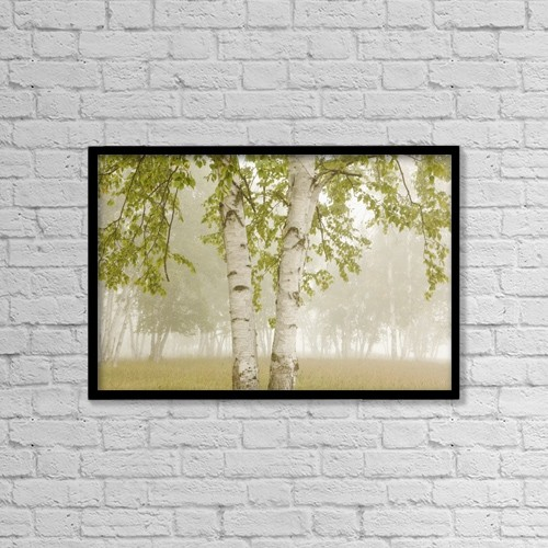 "Printscapes Wall Art: 18"" x 12"" Canvas Print With Black Frame - Birch Trees In The Fog by Susan Dykstra"