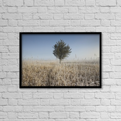 "Printscapes Wall Art: 18"" x 12"" Canvas Print With Black Frame - Frost On Tall Grass by Susan Dykstra"