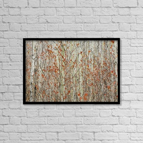"Printscapes Wall Art: 18"" x 12"" Canvas Print With Black Frame - Spring Buds Against Birch Trees by Susan Dykstra"