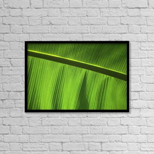 """Printscapes Wall Art: 18"""" x 12"""" Canvas Print With Black Frame - Green Leaf, Close-Up by Marcus Peel"""