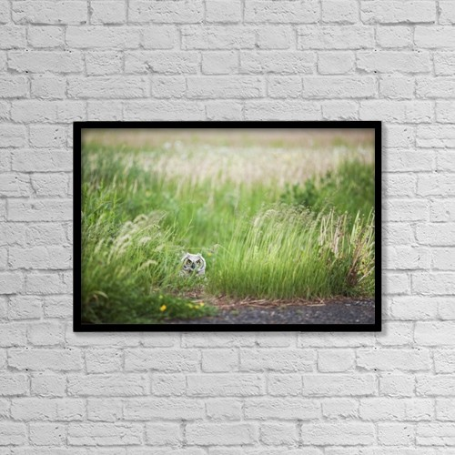"Printscapes Wall Art: 18"" x 12"" Canvas Print With Black Frame - Owl In The Grass by Susan Dykstra"