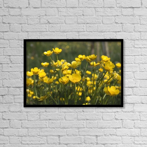 """Printscapes Wall Art: 18"""" x 12"""" Canvas Print With Black Frame - A Field Of Yellow Buttercups by John Short"""