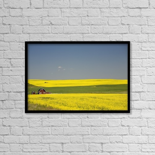 "Printscapes Wall Art: 18"" x 12"" Canvas Print With Black Frame - Flowering Canola Fields And A Red Barn by Michael Interisano"