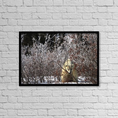"Printscapes Wall Art: 18"" x 12"" Canvas Print With Black Frame - Animals by Richard Wear"
