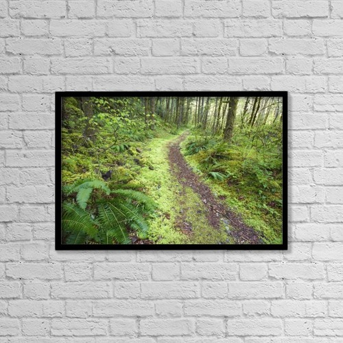 "Printscapes Wall Art: 18"" x 12"" Canvas Print With Black Frame - A Trail Leading Through The Forest by Craig Tuttle"