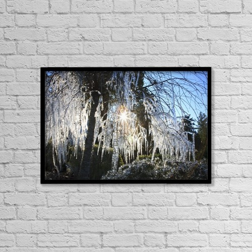 "Printscapes Wall Art: 18"" x 12"" Canvas Print With Black Frame - Icicles Hanging From Tree Branches by Craig Tuttle"