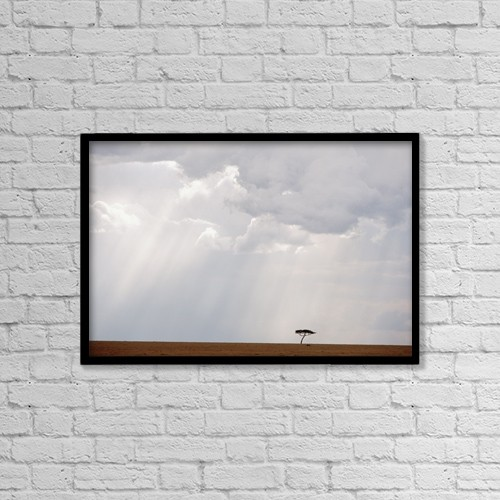 "Printscapes Wall Art: 18"" x 12"" Canvas Print With Black Frame - Flat-Topped Acacia Tree Beneath Stormy Skies by Ian Cumming"