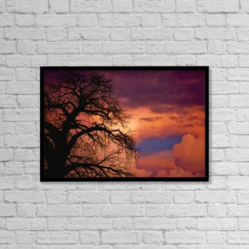 "Printscapes Wall Art: 18"" x 12"" Canvas Print With Black Frame - Silhouette Of Baobab Tree At Dusk by Ian Cumming"