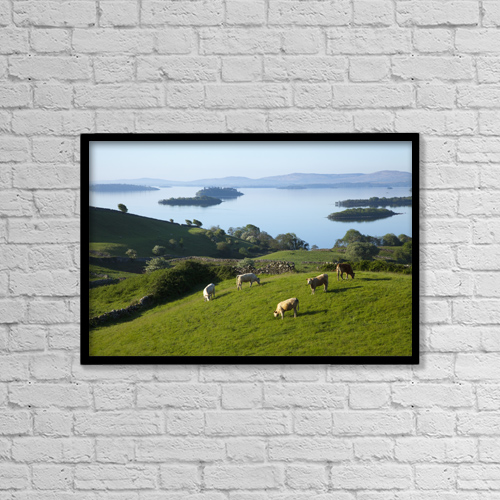 "Printscapes Wall Art: 18"" x 12"" Canvas Print With Black Frame - Sheep Grazing By Lough Corrib by Peter Zoeller"
