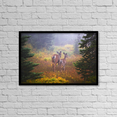 "Printscapes Wall Art: 18"" x 12"" Canvas Print With Black Frame - Deer In The Fog In Paradise Park In Mt by Craig Tuttle"