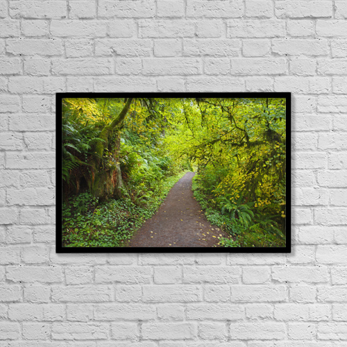 """Printscapes Wall Art: 18"""" x 12"""" Canvas Print With Black Frame - A Trail In Silver Falls State Park by Craig Tuttle"""