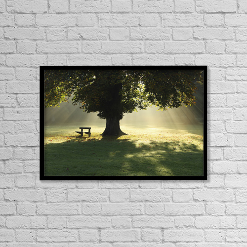 "Printscapes Wall Art: 18"" x 12"" Canvas Print With Black Frame - Lone Tree In Mist And Sunlight by Trish Punch"